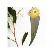 Bookmark - Leaf Lemon
