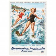 Retro Print - Mornington Peninsula Playground