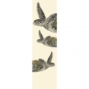 Bookmark -  Hawksbill Sea Turtle