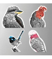 Magnets (Set of 4) - Birds Of Australia