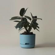 Mr Kitly x Decor Selfwatering Plant Pot 170mm - Pond Blue