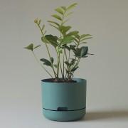 Mr Kitly x Decor Selfwatering Plant Pot 215mm - Dark Moss
