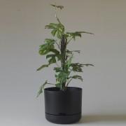 Mr Kitly x Decor Selfwatering Plant Pot 300mm - Black