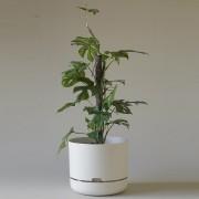 Mr Kitly x Decor Selfwatering Plant Pot 300mm - White Linen
